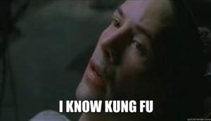 Kung Fu - Matrix